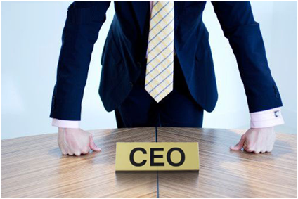 The Essential Guide To Becoming A Hotshot CEO