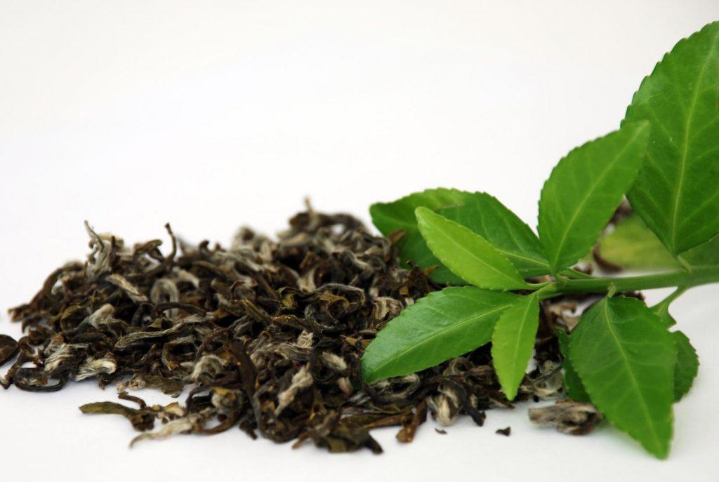 Are Private Label Tea Bags Good?