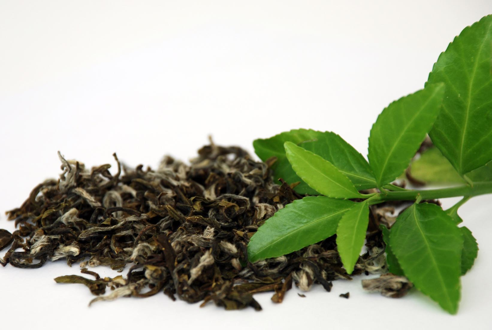 tea-leafs