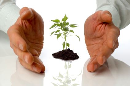 5 Costs You Will Need To Consider As Your Business Grows
